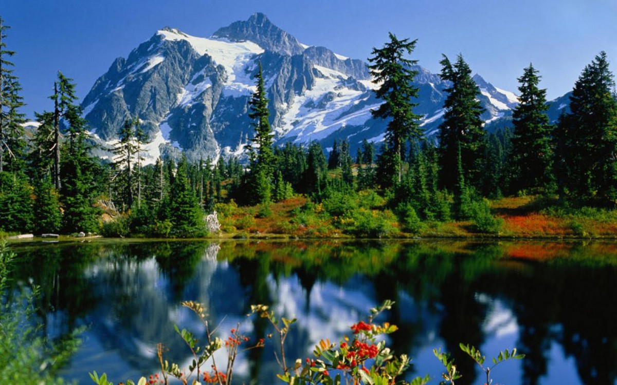 Beautiful Earth – Earth and Peace Institute